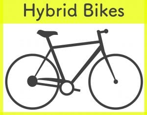 trek and specialized hybrid bike rentals